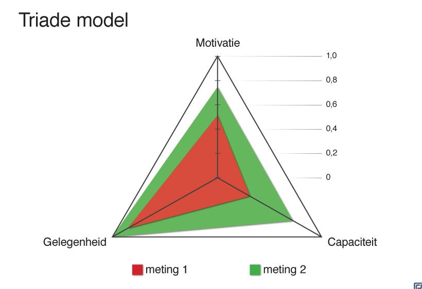 triade model